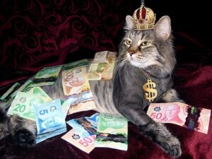 5 Powerful Steps How to Attract Money Into Your Life Fast